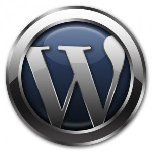 5 Dicas para usar o WordPress como CMS